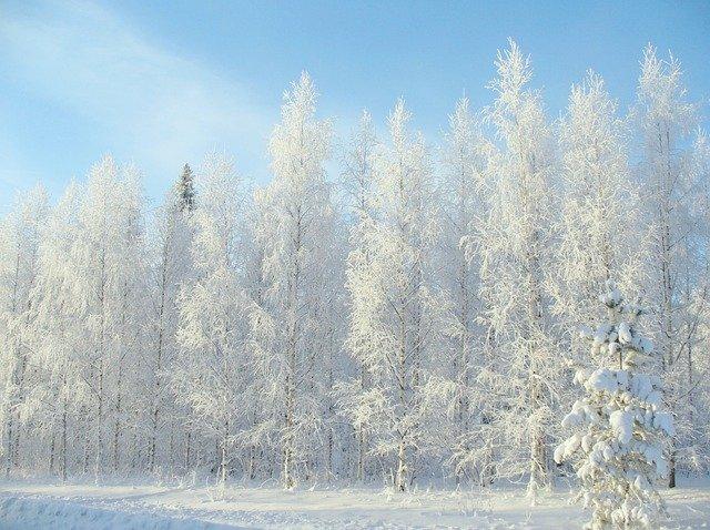 winter-2683845_640